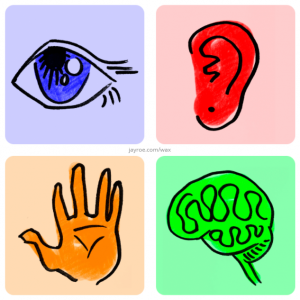 An illustrated drawing of an eye, an ear, a hand, and a brain representing the four areas of accessibility: Visual, Audio, Physical and Cognitive.